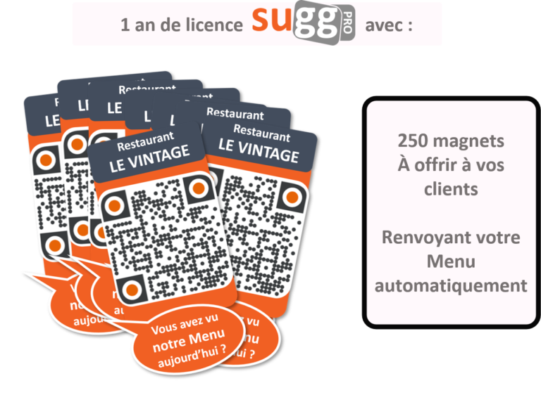 offre 250 magnets sugg pro